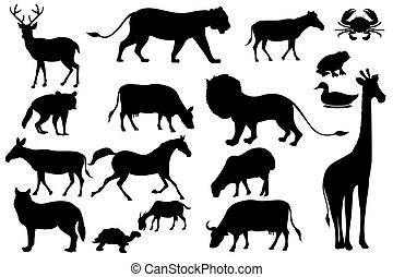 Animal Silhouette - illustration of set of animal silhouette...