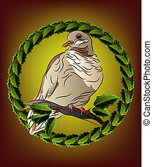 Dove perched on holly branch - Dove perched on a holly...