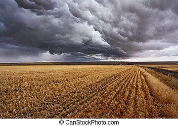 Thunderclouds. Montana, the USA - Thunderclouds above fields...