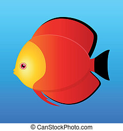Red Monk Discus - A vector illustration of a yellow, black...