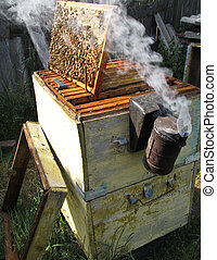 Fumigation of bees - Work in the apiary quite laborious To...