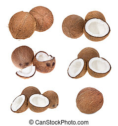 set with coconuts on white background