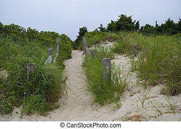Cape Cod Beach Trail