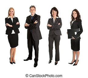 Group of successful business people - Successful experienced...