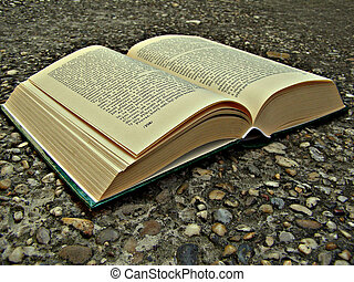 Book isolated on a path background
