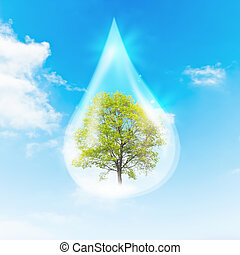 Green Tree inside a clean drop of water as a symbol of...