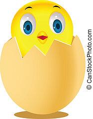 Chicken in egg shell