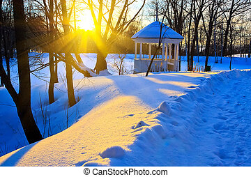 Sunset in winter park - Beautiful sunset in a winter park,...