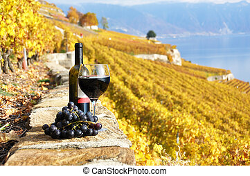 Red wine and grapes on the terrace vineyard in Lavaux...