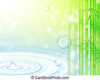 water over bamboo - water over green bamboo forest with...