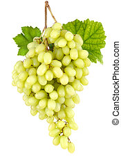 Sweet seedless green grapes on white - Studio isolation of a...