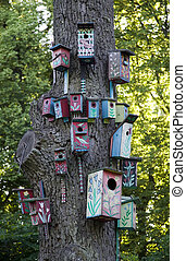 Tree with many nesting boxes - There is a tree with many...