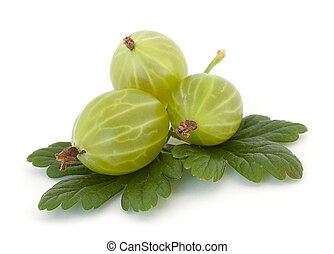 Gooseberry - Gooseberries isolated on white background