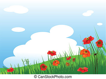 Poppies Meadow background - Summer grassy field and Poppies...