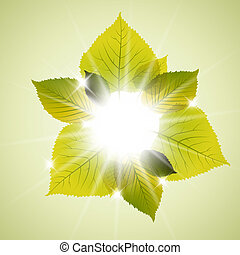 Spring sunny leafs abstract background