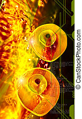 Ovum cell - Digital illustration of Ovum cell in colour...