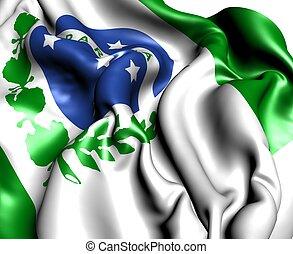 Flag of Parana. Close up.