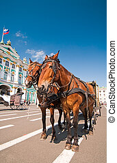 Tourist horses - Horses with carriage waiting for the...