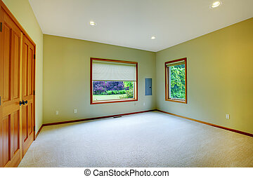 Large green bedroom with two windows
