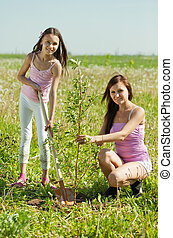 Mother and teen girl planting tree - Mother and her teen...
