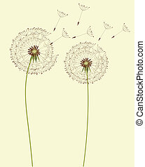 Dandelion flowers - Dry dandelion flowers - vector...