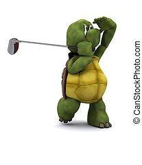 烏龜, 玩, 高爾夫球