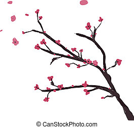 Cherry Blossom painted with watercolors and vectorized
