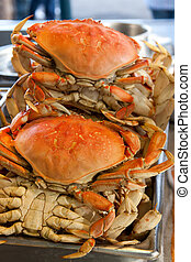 Dungeness crabs at Pier 39, San Francisco