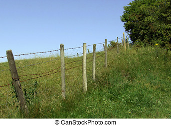 Farmland Fence - Farmland with diagonal fence posts.