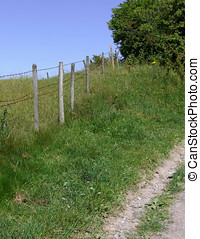Farmland view with fence posts and footpath.