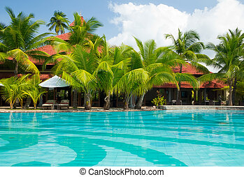 Swimming pool with palm trees - Cristal clear swimming pool...
