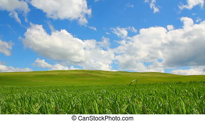 green hill with grass under cloudy sky