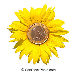 Sunflower-coins - sunflower with euro coins in the center on...