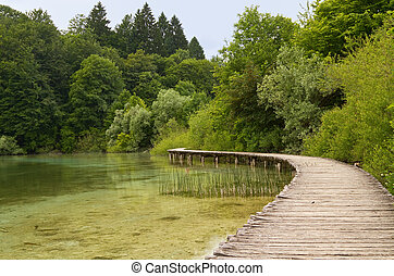 Walkway at the lake.