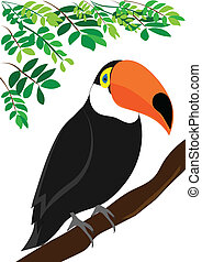 Toucan vector - Toucan sitting on a branch
