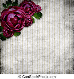roses on the grunge striped background
