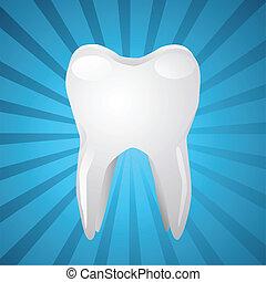 vetorial, Ilustração, branca, dente