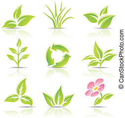 Leaves and a flower - Vector icons of leaves and a flower