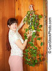 woman hanging flower on wall - Young woman hanging flower in...