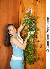 Mature woman hanging flower on wall - Mature woman hanging...