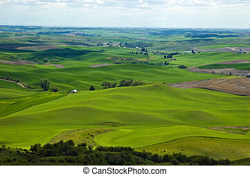Palouse panorama - Beautiful rolling hills of the Palouse...