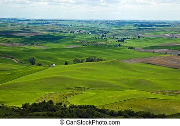 Palouse panorama - Beautiful rolling hills of the Palouse...
