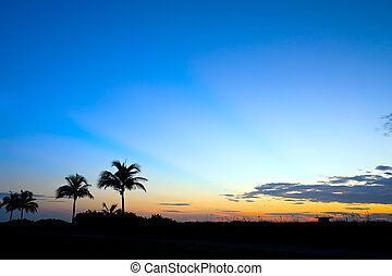 South Beach, Miami - Tropical sunrise, Miami, FL