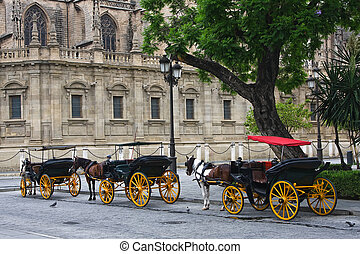 Sevilla - Horses and carts outside of Seville cathedral,...