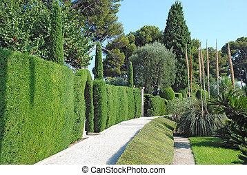 path through the beautiful garden - pass through the...