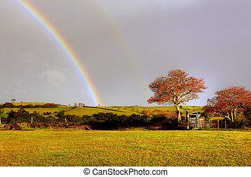 rainbow over a farm field