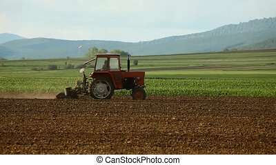 Corn sowing tractor following on the field