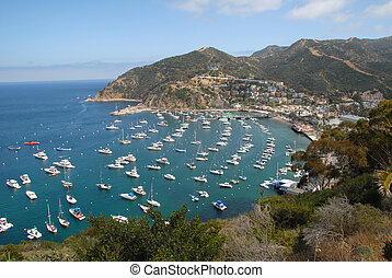 Catalina Island aerial view - aerial view of boats parked on...