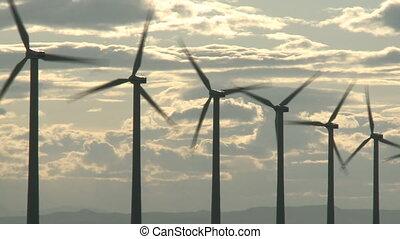 Wind Turbines - Row of wind turbines generating electricity