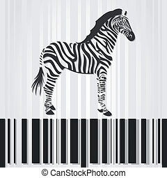 Zebra - The horse a zebra costs on a stroke a code A vector...